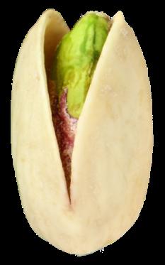 pistachio-1